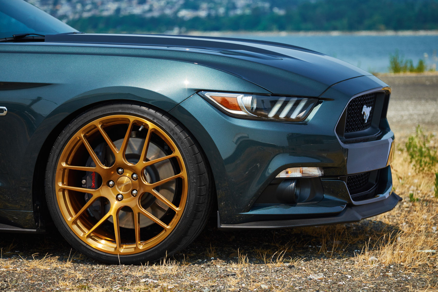 2015 Ford Mustang | H&R Springs Mustang on Forgeline SE1 Wheels - Passenger Wheel