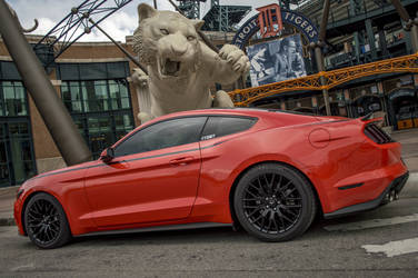 2015 Ford Mustang   Comerica Stadium