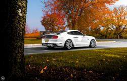 White Mustang GT on Velgen Wheels VMB9 Matte Silver 20x9 & 20x10.5