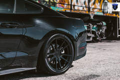 Ford Mustang - Rear Stance