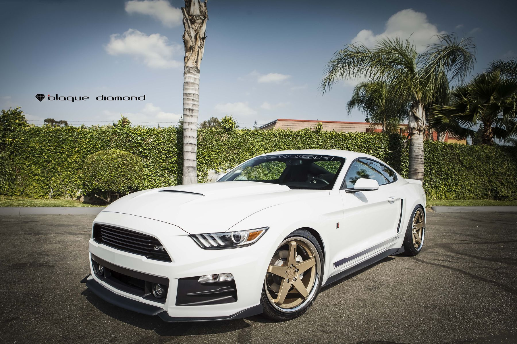 2015 Ford Mustang | 2015 Ford Mustang Roush Fitted With 20 Inch BD-21's in Bronze with Chrome SS Lip
