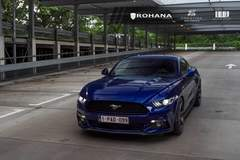 Ford Mustang - Euro Plate