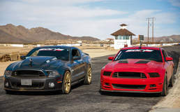 Dual Mustangs