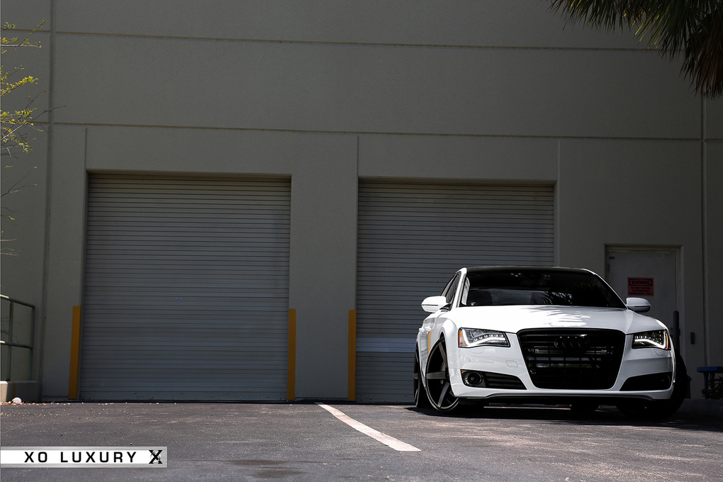 2012 Audi A6 | '12 Audi A8 on XO Miami's