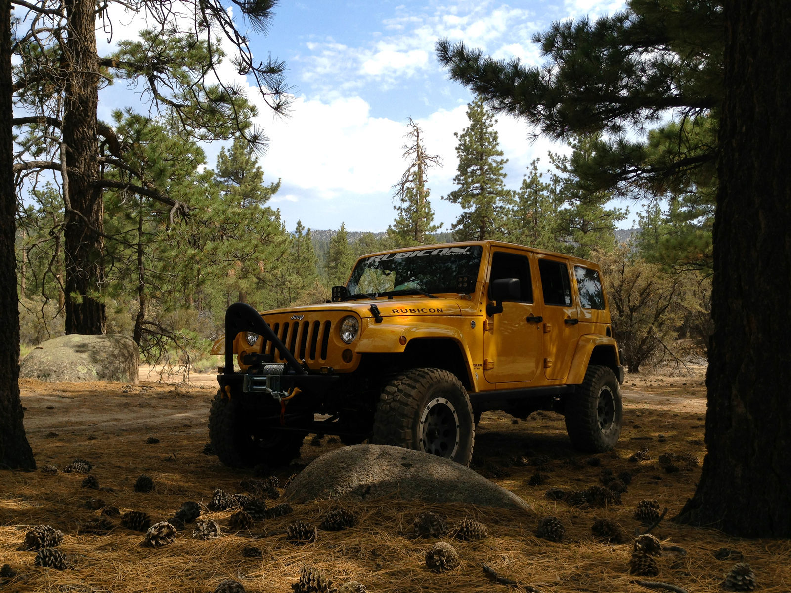 2012 Jeep Wrangler | JK in the Woods