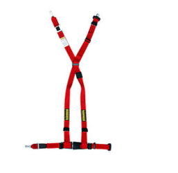 Schroth 4 Point Harness