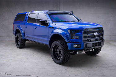 2015 Ford F-150 | 2015 Ford F-150 MAD Edition