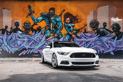 White Mustang GT | Classic5 Matte Silver