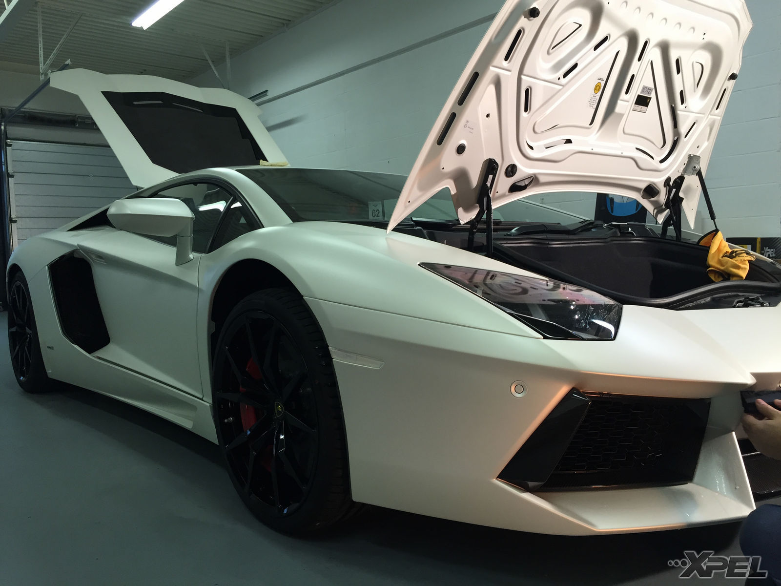 Lamborghini Aventador | XPEL STEALTH Satin-Finish clear bra installation