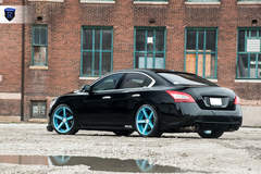 Black Nissan Maxima - Stance Shot