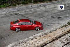 Custom Nissan Maxima - Top Shot
