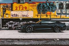Ford Mustang - Locomotion Shot