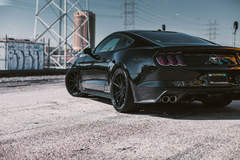 Ford Mustang - Tinted Lights