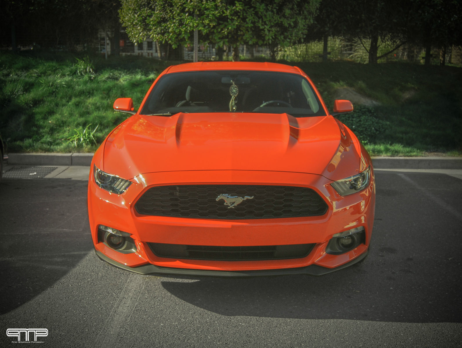 2015 Ford Mustang | 2015 Ford Mustang