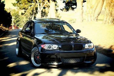 2008 BMW 1 Series | 2008 BMW 135i