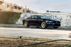 2015 Supercharged Ford Mustang