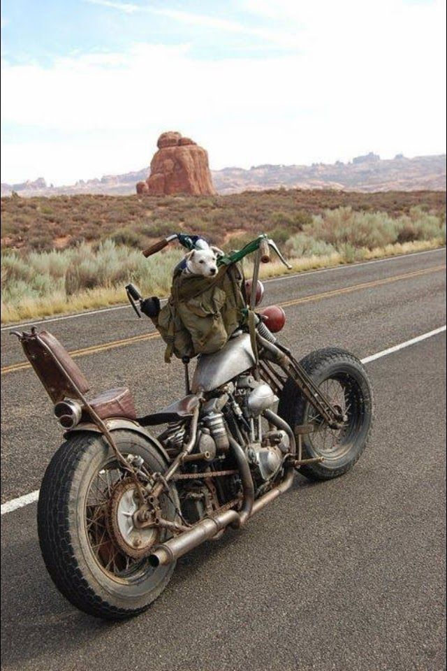 Harley-Davidson  | Don't Forget Your Buddy!