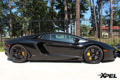 Lamborghini with XPEL ULTIMATE paint protection film