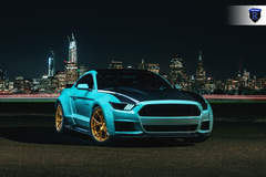 Ford Mustang - Hood