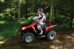 Suzuki LTF250