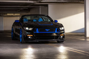 2015 Ford Mustang | 2015 MAD Industries Ford Mustang