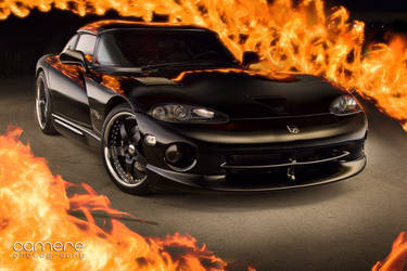 Hot Viper