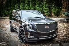 XPEL Atlanta protected this Cadillac Escalade with XPEL STEALTH
