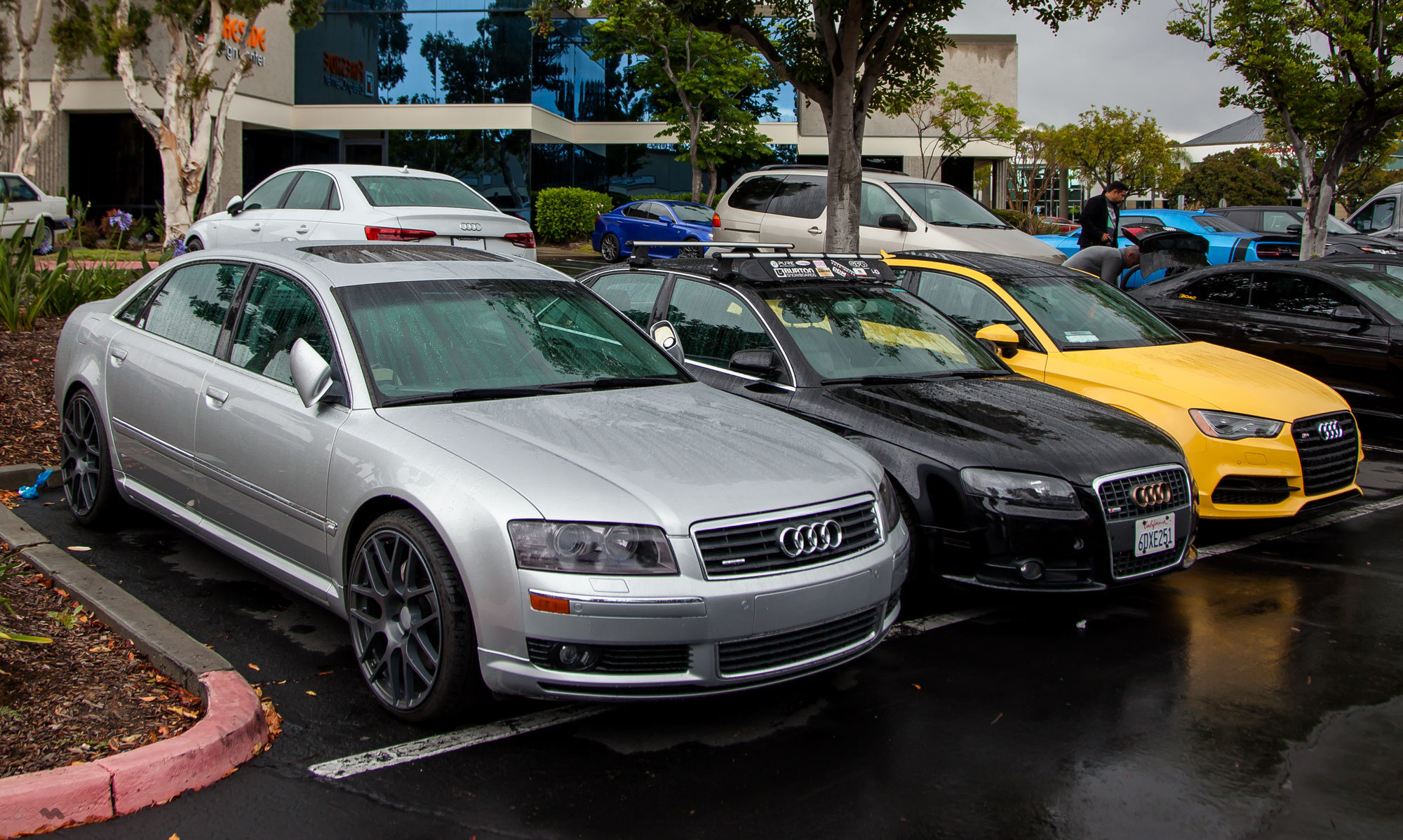 | The Auto Salon Grand Opening