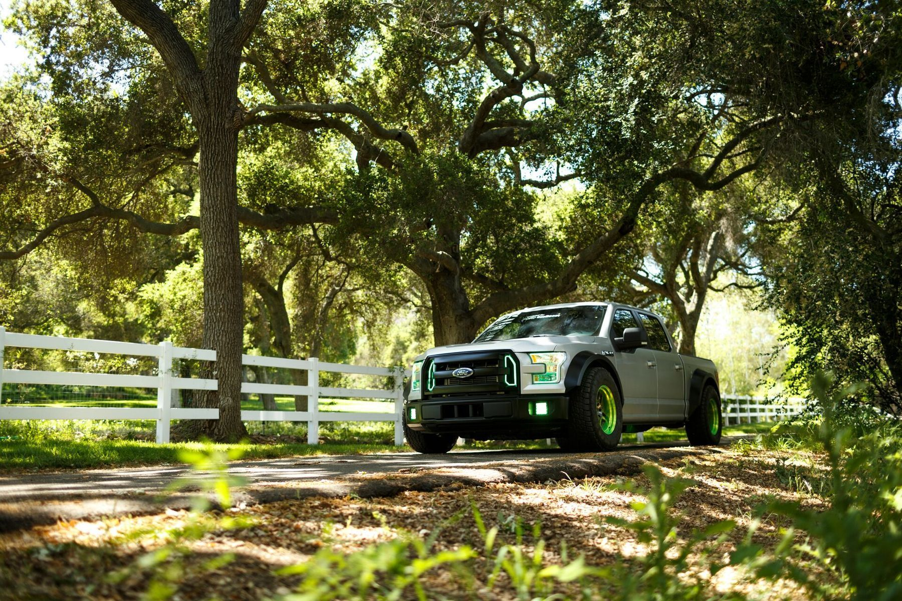 2015 Ford F-150 | The Ultimate Fun Haver