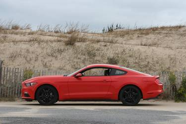 2015 Ford Mustang | 2015 Ford Mustang EcoBoost PP (Bone Stock)