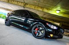BMW 550i on XO Miami's