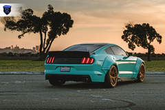 Ford Mustang - Rear