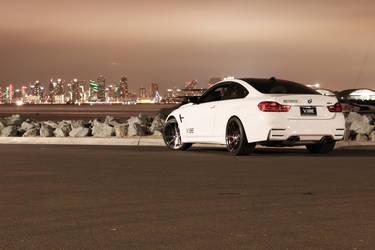 2015 BMW M4 | 2015 BMW M4 - Motoroso Edition