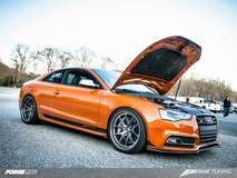 AWE Tuning's Audi S5 on Forgeline VX3C Concave Wheels