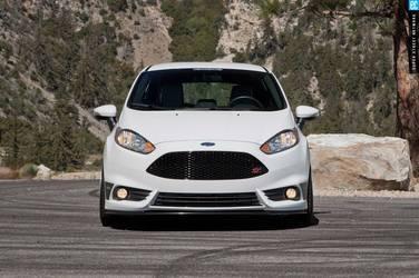 2014 Ford Fiesta ST | 2014 Ford Fiesta ST
