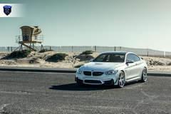BMW M4 - White Hood Shot