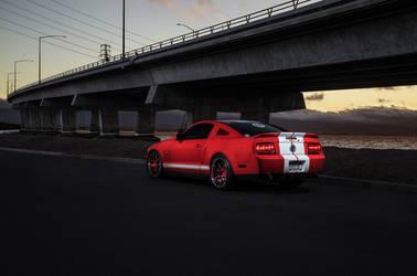 Mustang GT500 Sport Y5 Concave
