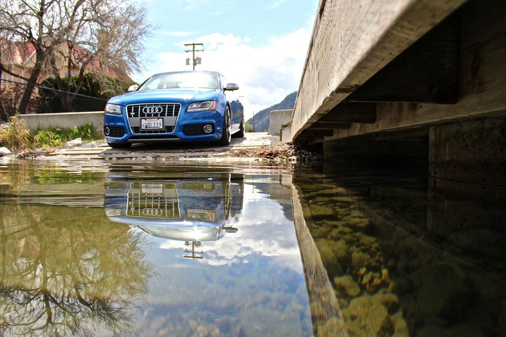 2008 Audi S5   Audi S5