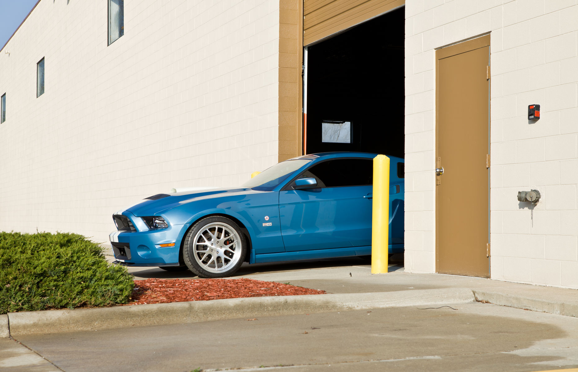 2013 Ford Shelby GT500 | 2013 Carroll Shelby Tribute