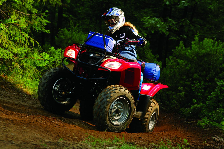2007 Suzuki    Suzuki LTF250
