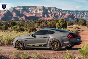 2016 Ford Mustang | Ford Roush Mustang