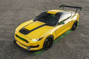 "2017 Ford GT350 | ""Ole Yeller"" Shelby GT350"