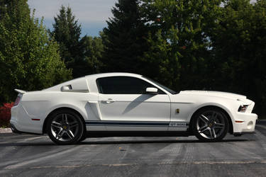 2010 Ford Mustang | 2010 Shelby GT500