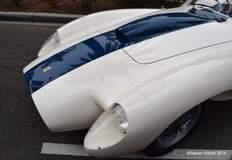 Ferrari Pontoon Testa Rosa Nose