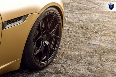2016 Jaguar F-Type | Gold Jaguar F-Type - Fitment