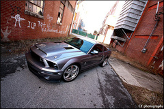 '10 Ford Mustang Shelby GT500