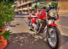Sexy+Red+Triumph