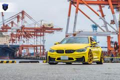 BMW M4 Pair - Front Profile
