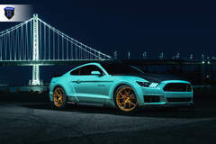 Ford Mustang - Lowered