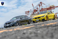 BMW M4 Pair - Gray And Yellow